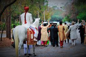 baraat dhol procession rear shot orig