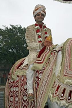 baraat groom on horse angeli carriages orig